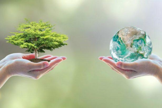 Dbając ośrodowisko, dbasz osiebie – totakie proste